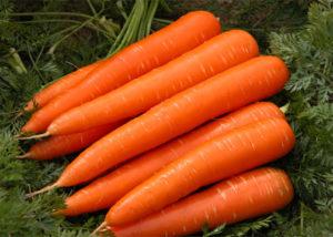 wiki-Carrots