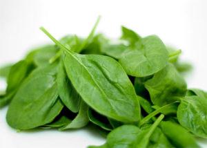 wiki-Spinachs