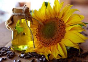wiki-Sunflowers