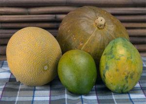 wiki-pumpkins