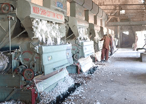 Pakistan Cotton Market Commentary