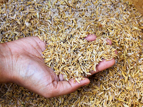 Chaff Rates in Pakistan